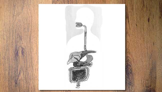 La digestión: aspectos químicos, mecánicos y sutiles :: Mada Elek