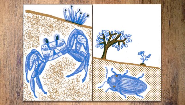 Páginas 6 y 7